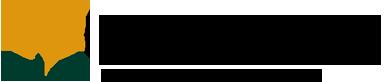 Логос инфо
