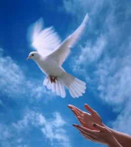 Молитвы о мире