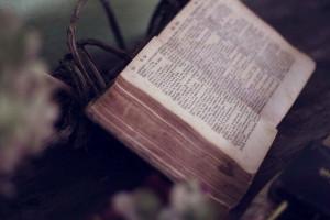 Суд во Владивостоке отменил решение об уничтожении Библий