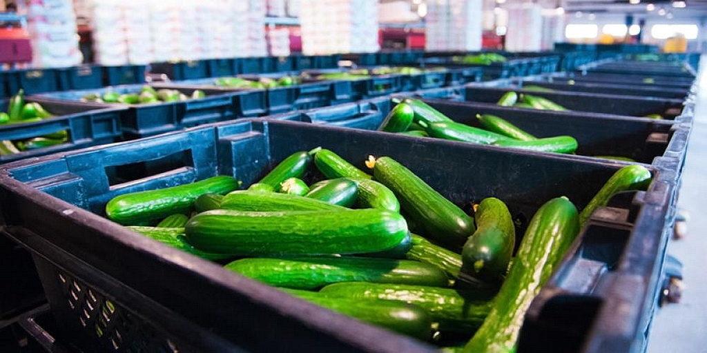 Фабрика по производству продуктов питания в Бразилии удваивается как центр евангелизма