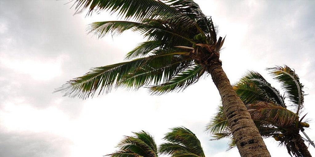 Адвентисты в Пуэрто-Рико начинают восстановление после урагана Мария