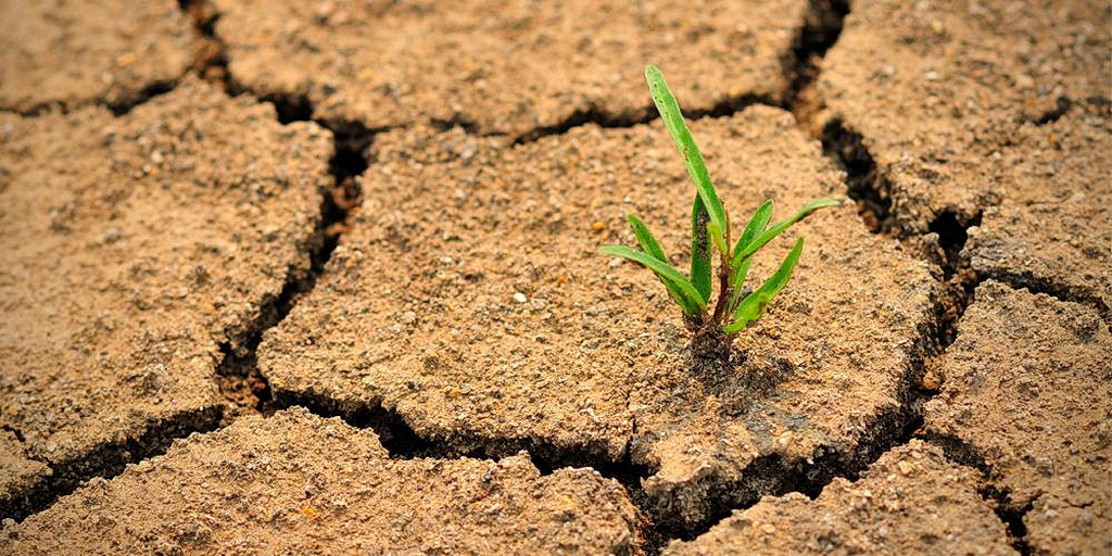 ADRA предоставляет помощь в борьбе с засухой в Австралии