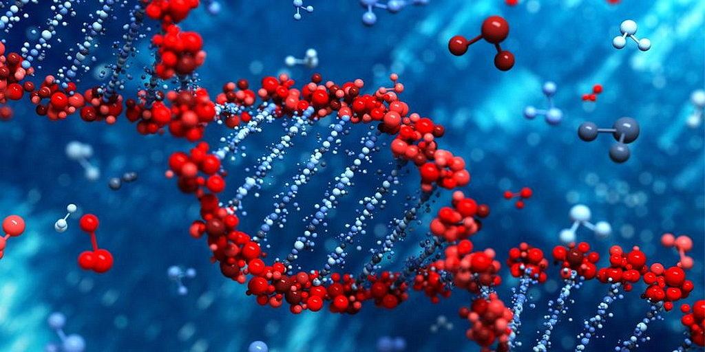 Существуют ли биологические доказательства недавнего сотворения жизни? - Часть I