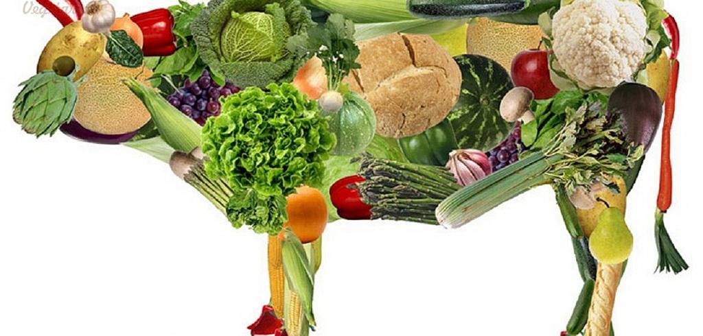 Чи корисне для здоров'я вегетаріанство
