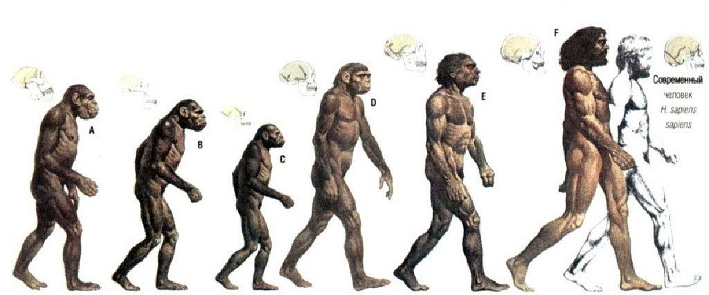 Ничего общего: почему теистическая эволюция и библейское сотворение мира взаимно исключают друг друга (эсхатологический аспект)