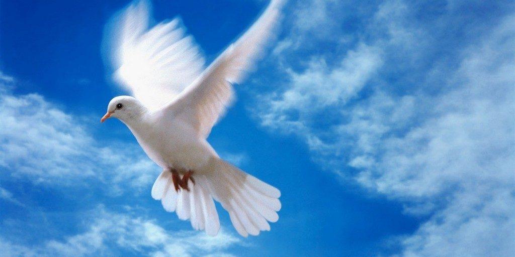 Полевая школа «В преддверии излития Святого Духа»