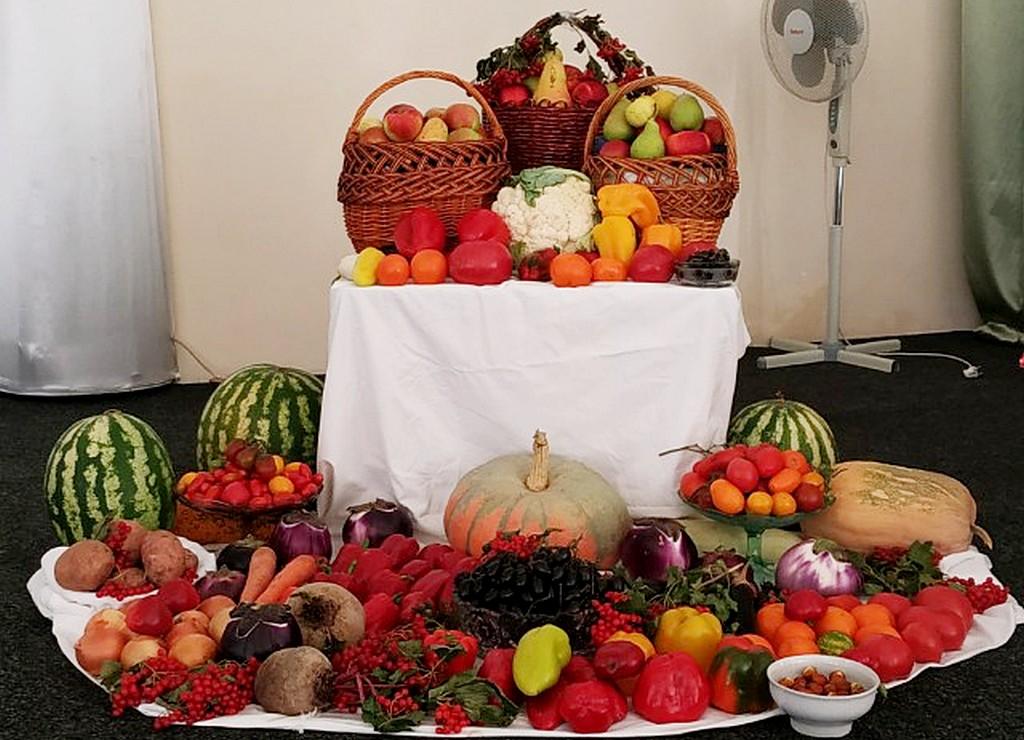 Никопольчане благодарили Бога за урожай