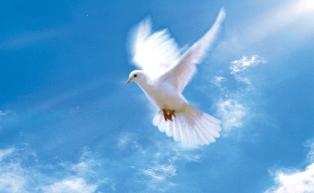 Какова роль Эллен Уайт в утверждении ранней Церкви АСД в понимании учения о личности Святого Духа и Троице?