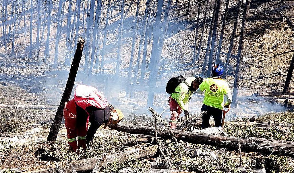 Пожарные службы спасения работают над локализацией пожаров в Восточном регионе Сьерра-Мадре на северо-востоке Мексики. [Фото: Конференция Северо-Восточной Мексики]